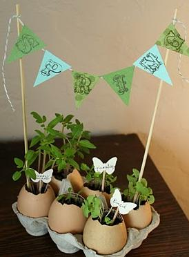 Homemade Teacher Gifts - Egg Shell Planters